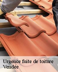 Urgence infiltration toiture