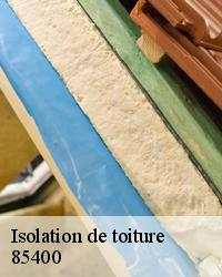 Isolation de comble laine de verre 85400